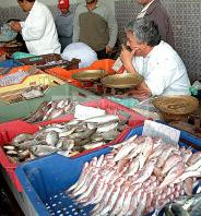 djerba;houmt;souk;ile;jerba;poisson;marche;march�;