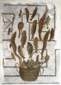 mosaique;antiquite;sousse;peche;poisson
