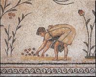 musee;bardo;romain;antiquite;mosaique;cueillette;olive;olivier;