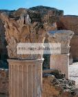 antonin;thermes;colonne;chapiteau;carthage;antiquit�;romain;
