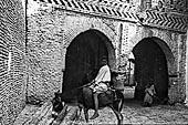 Tozeur 1900